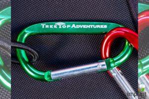 Carabiners Keychain