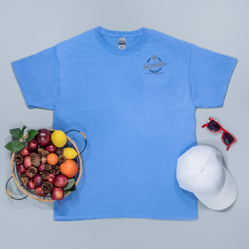 Custom Embroidered Adult Basic Cotton T-Shirts