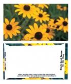 Custom Business Card Black-eyed Susan Seeds